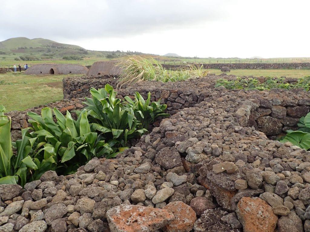 Manavai Rapa Nui