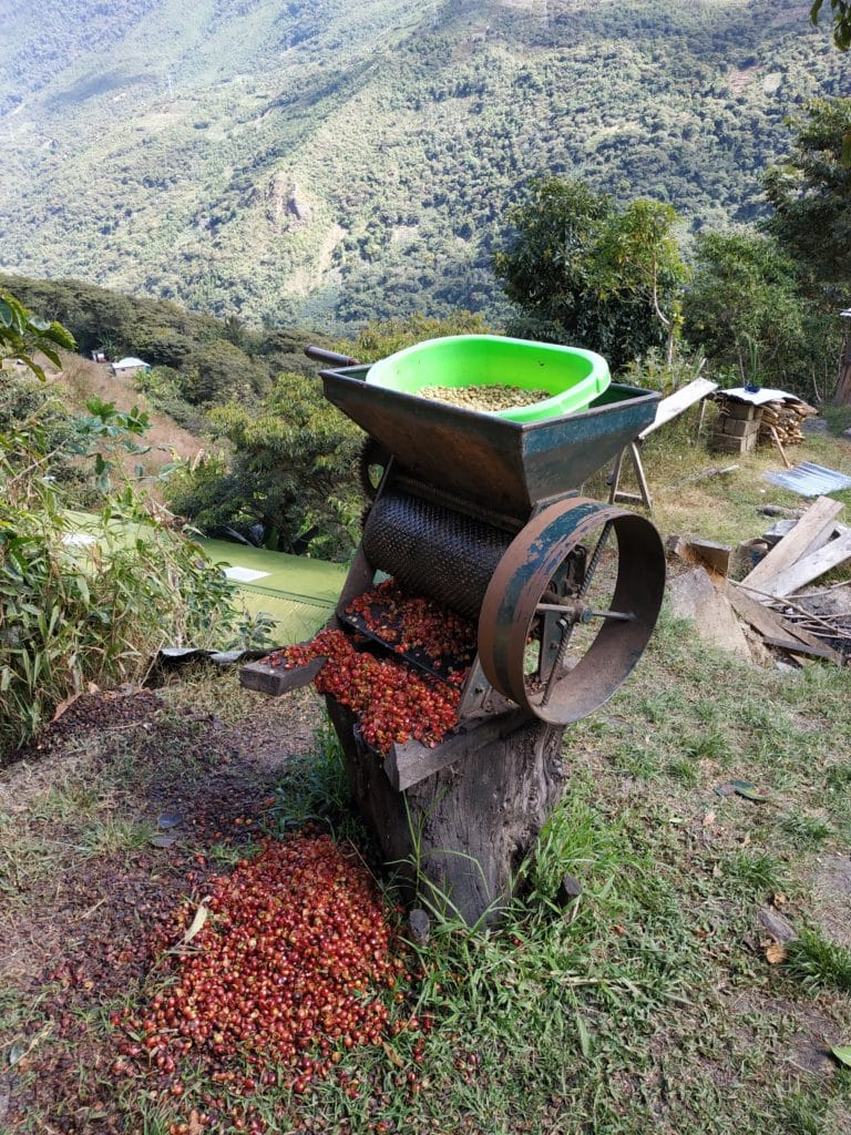 caffè salkantay