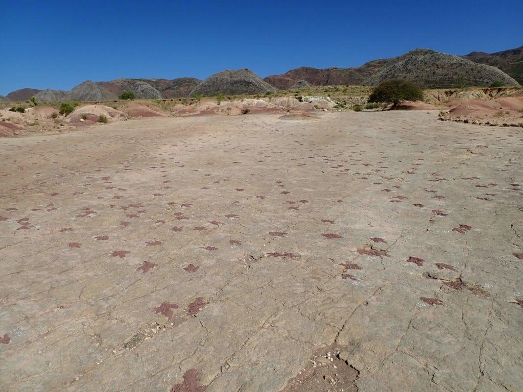 dinosaurs footprints Torotoro
