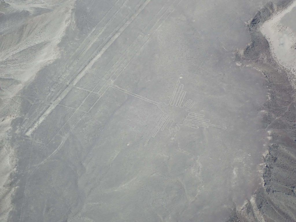 Nazca linea